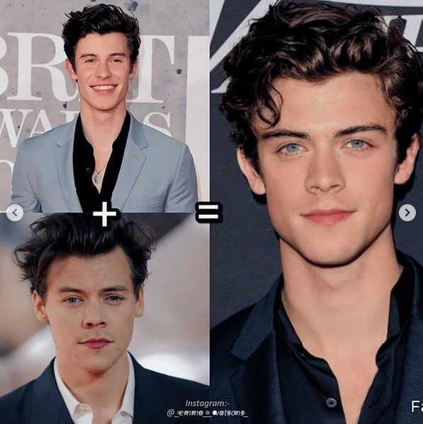 hombre perfecto shawn mendes harry styles